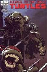 Teenage Mutant Ninja Turtles (2011-Present) #11 Variant C: 1:10 Variant