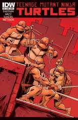 Teenage Mutant Ninja Turtles (2011-Present) #12 Variant A