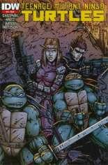 Teenage Mutant Ninja Turtles (2011-2021) #19 Variant D: 2nd Printing