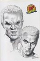 Spike: After the Fall (2008) #4 Variant E: DF Exclusive Sketch Cover; Limited to 1000 Copies