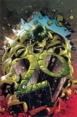 Immortal Hulk #7 Variant D: Virgin Variant